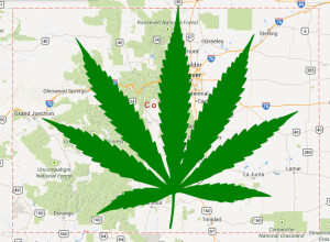 Marijuana in Maps and Local Search Listings