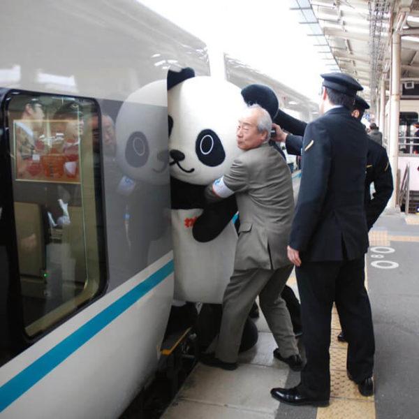 panda-boarding-train-1397491366