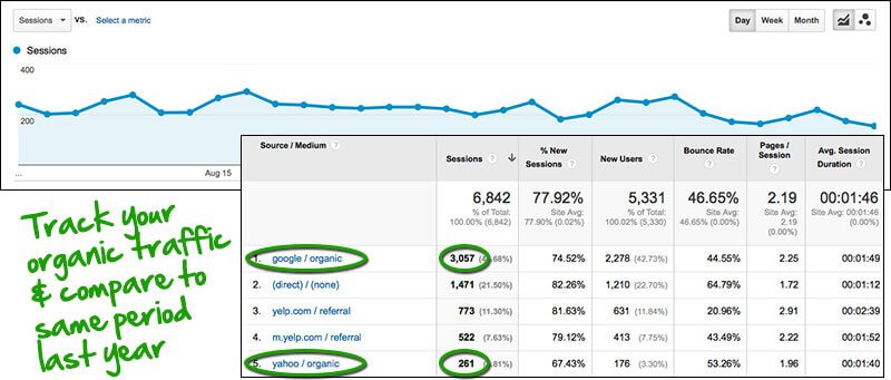 Google Analytics - organic search traffic