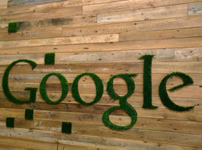 google-grass