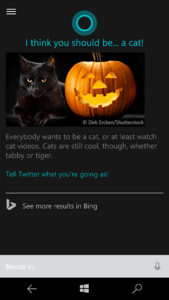Bing cortana what should i be for halloween
