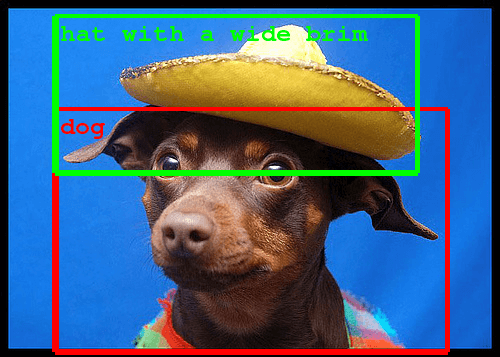 Example Visual Recognition Challenge