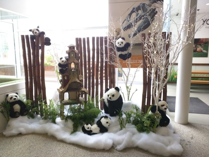 Google Panda Nativity Scene