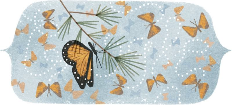 Google doodle 41st anniversary of the mountain of butterflies