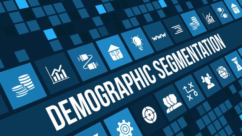 demographic-segmentation-ss-1920