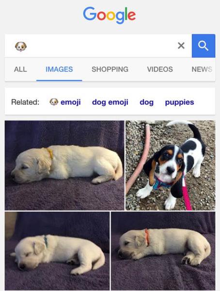google-dog-emoji-result-1463522644