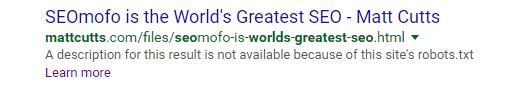 World's Greatest SEO SERPs