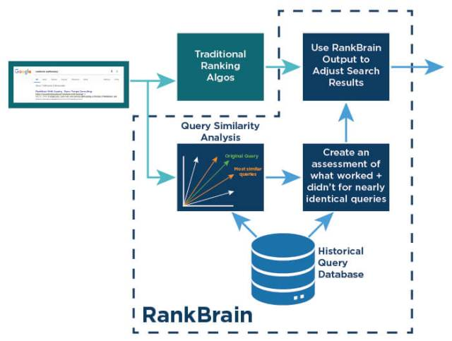Rank-Brain-Analysis
