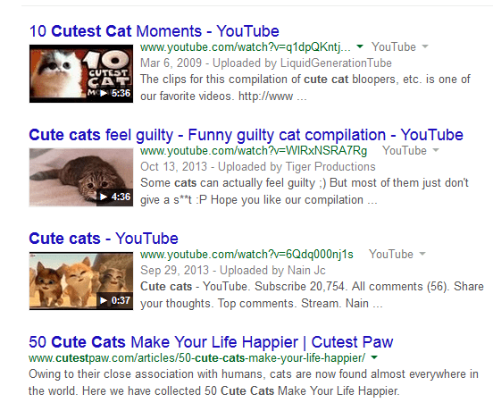 Cute Cats Video Results