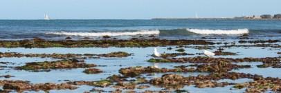 Waterman's Beach north of Perth