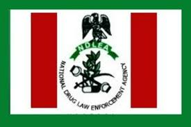 NDLEA Recruitment Portal - FG to Recruit 5000 Personnels