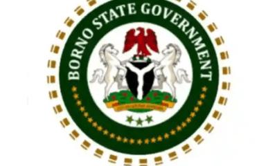 Borno State Scholarship Board 2021-2022 Undergraduate Scholarship