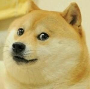 keyword research doge