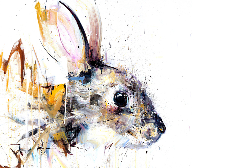 rabbit-460x340