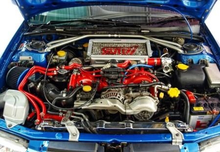 car hoses circulatory system