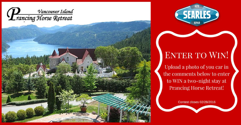 Prancing Horse Retreat - Searle's Facebook Contest
