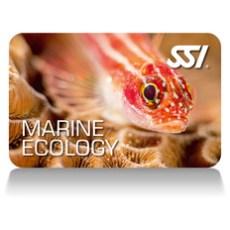 ssi marine ecology cert