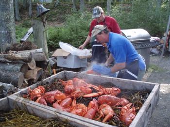 Maine Lobstahs