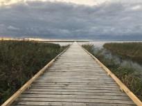320 meter færdig bro:-)