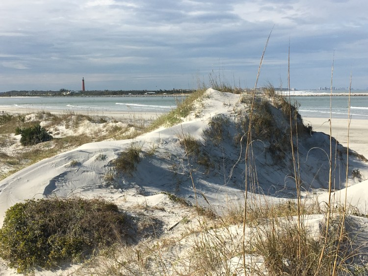 Sand dunes Ponce Inlet, Florida's east coast
