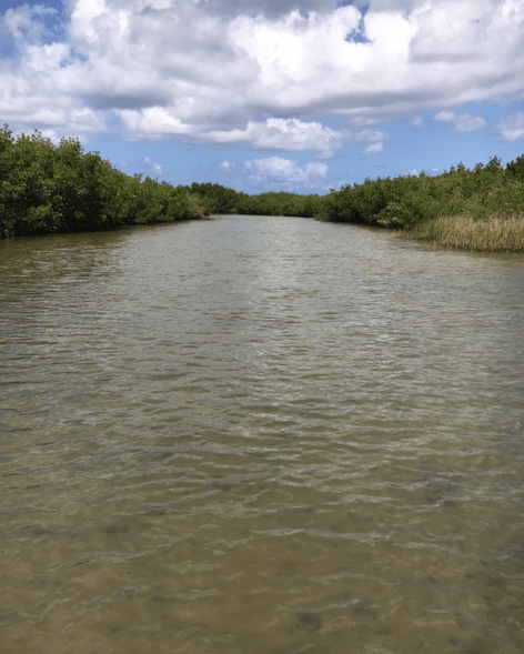 Indian River backwater canal