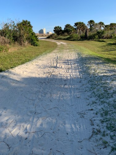 Ponce Inlet dog trail to beach
