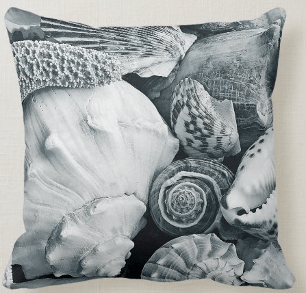 black and white seashell photography pillow