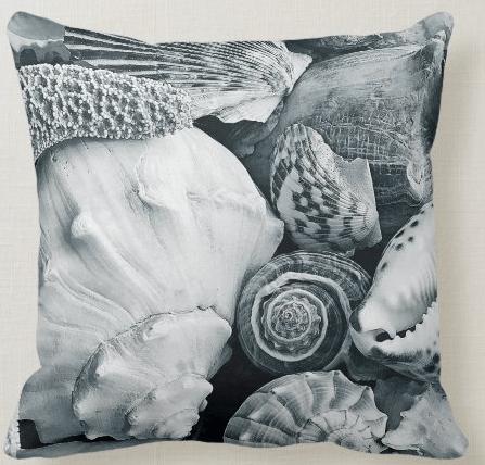 black and white seashells pillow decorative coastal beach shells photography real conch whelk tropical
