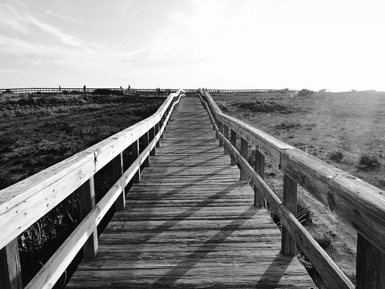 boardwalk black and white
