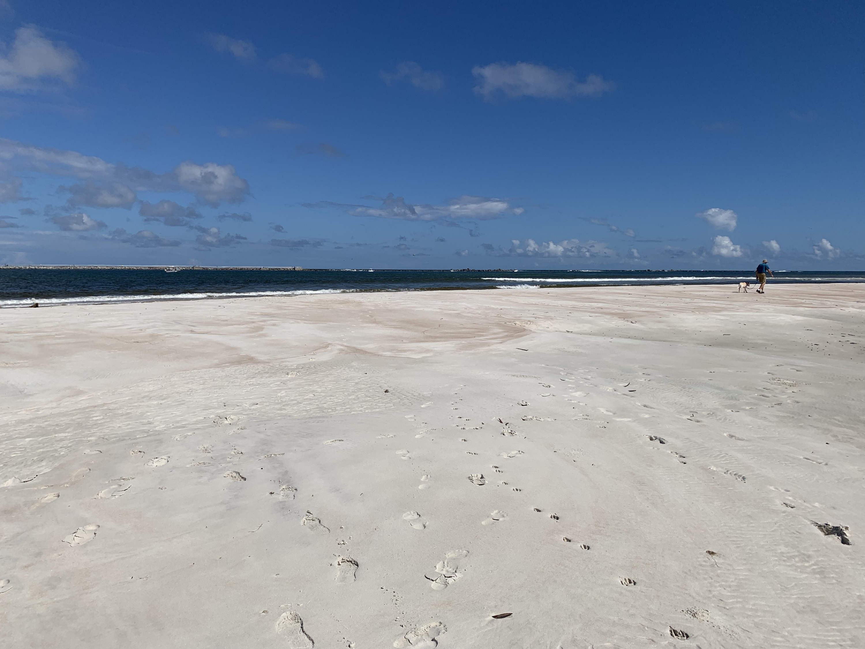 Ponce Inlet dog beach