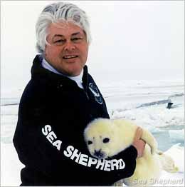 editorial_120129_1_1_Paul_Watson_with_baby_Harp_Seal