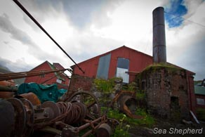 editorial_110729_1_1_The_last_whaling_station_0260