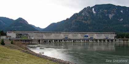 editorial-130315-2-2-Bonneville-Dam