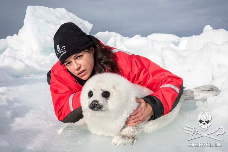 editorial-170329-1-5-Michelle-Rodriguez-and-seal-pup-8100123ret