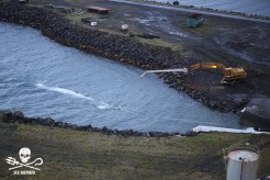First fin whale being winched from Hvalur 8 to slipway