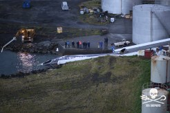 First fin whale on slipway 22 June 2018