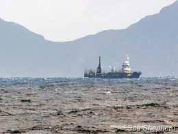 The Yushin Maru No. 3 follows Sea Shehperd to Macquarie Island. Photo: Carolina A. Castro