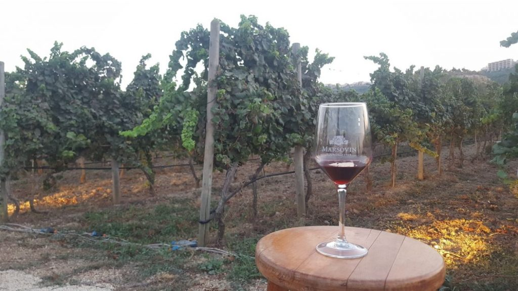 Wine Tasting Malta - Cheval Franc Wine Glass