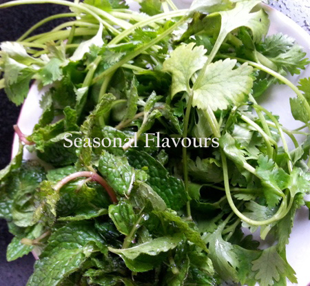 Mint and Coriander leaves for Saag Paneer Recipe