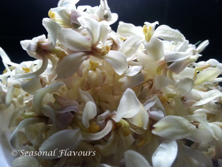 Sojne Phool - Drumstick Flowers Recipe