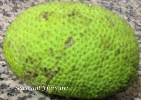 Kadachakka Breadfruit