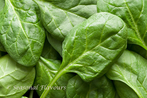 Spinach leaves for making pakoras with palak