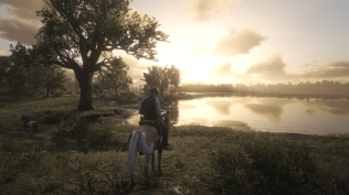 Red Dead Redemption 2 (5)