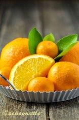 seasonette_orangen_1