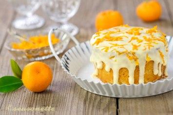 seasonette_orangenkuchen_quer2