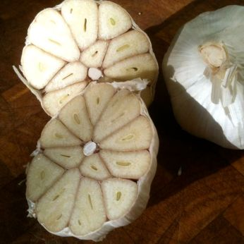 cut garlic