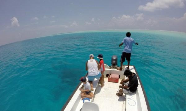 Fishing 08