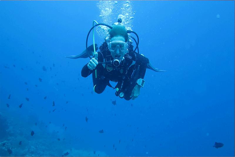 Diving-19WEB