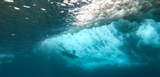 Season Surfing 004.jpg