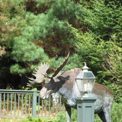 Moose Sculpture at Point Lookout